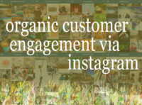 Organic Customer Engagement Via Instagram text collage