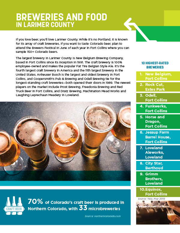 Example of an informational poster about craft beer that Jet was able to provide project support on